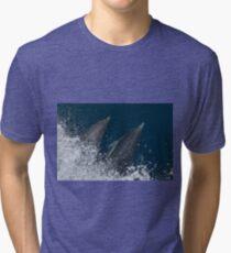 Dolphins, Channel Islands National Park, California Tri-blend T-Shirt