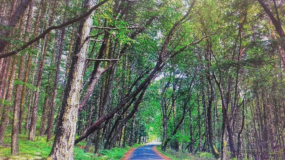 The Road Less Traveled by bmmarketing1