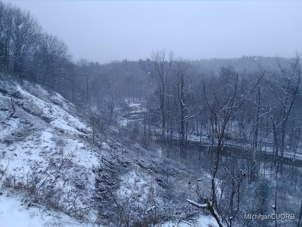 MIchigan Winter Wonder Land  by MIchiganCUORB