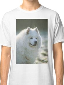 Smiling Samoyed  Classic T-Shirt