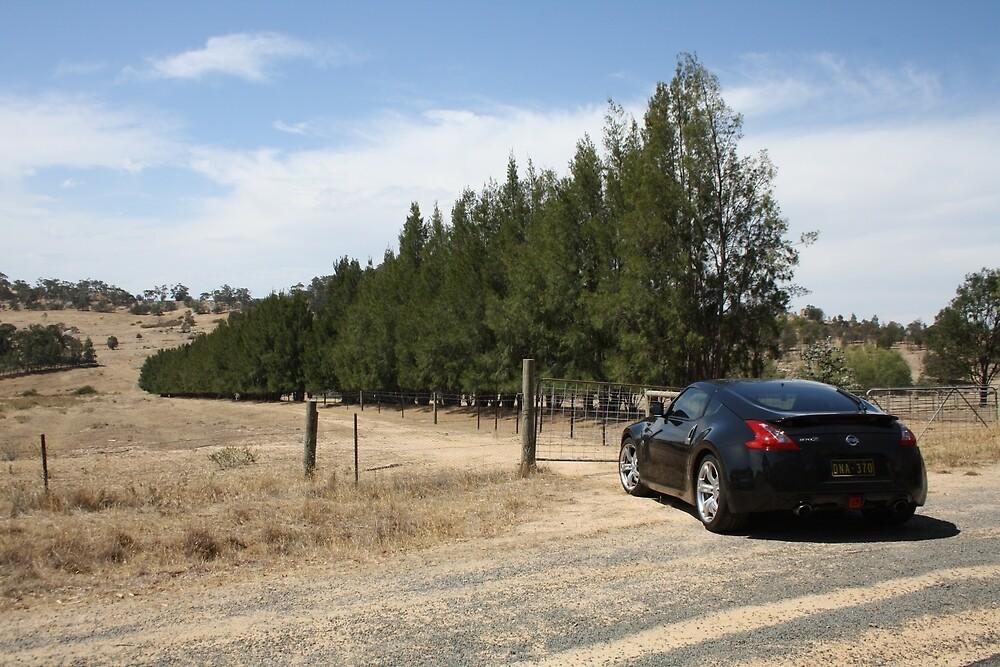 Nissan 370Z Landscape by RyansEye