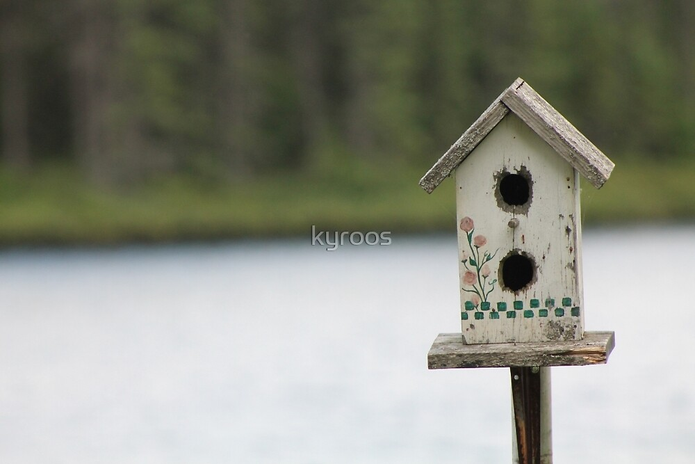 The old bird house by kyroos