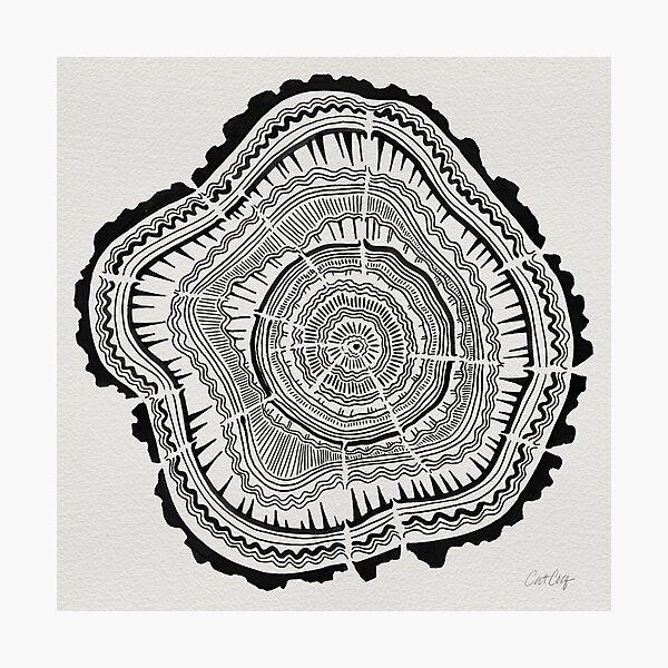 Tree Rings – Black on White Photographic Print