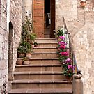 Assisi Welcome by phil decocco
