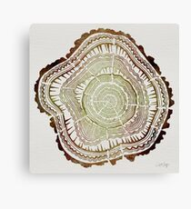 Tree Rings – Watercolor Canvas Print