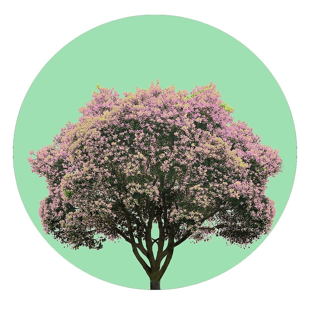 Pink Tree circled  by UrielG
