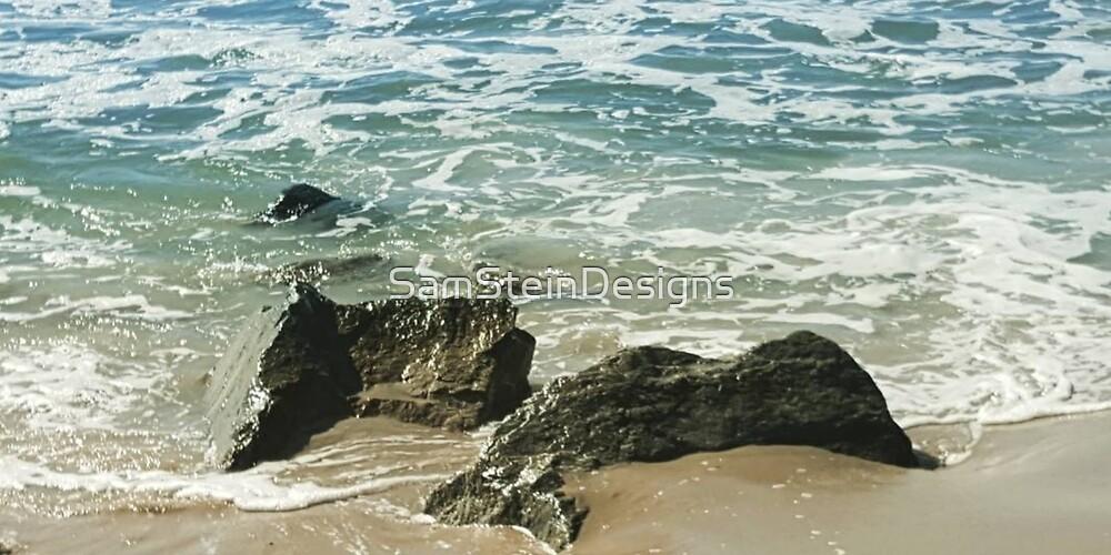 Ocean Encounter by SamSteinDesigns