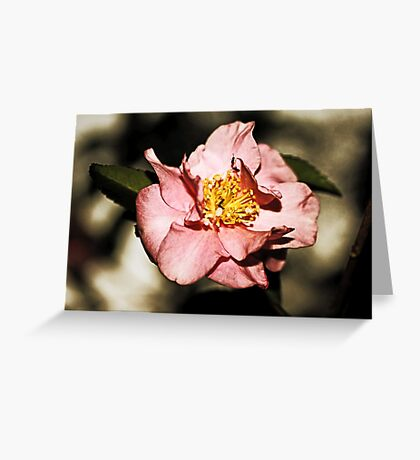 Not Just Another Pretty Camellia Greeting Card