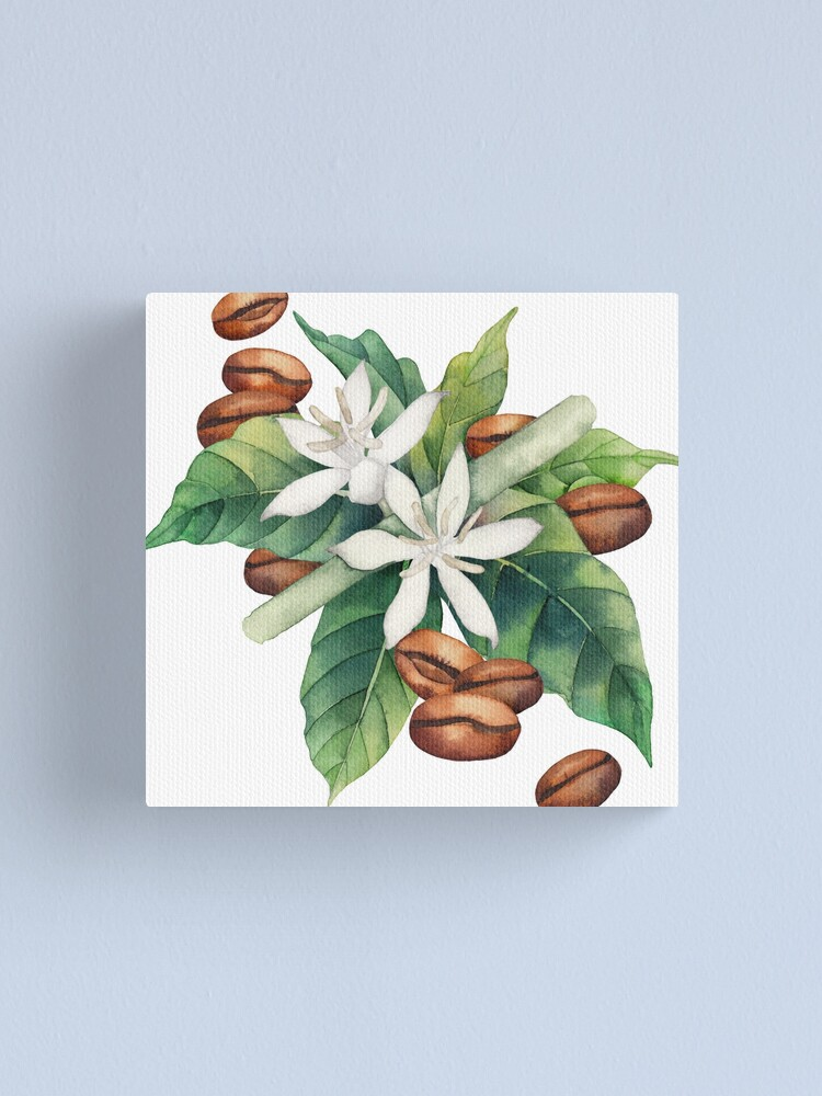 Alternate view of Watercolor coffee vignette Canvas Print