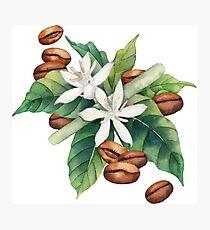 Watercolor coffee vignette Photographic Print