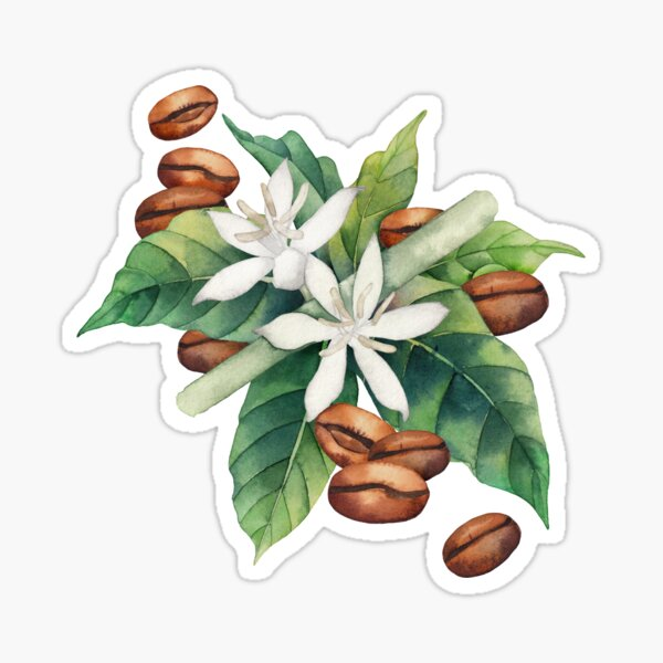Watercolor coffee vignette Sticker