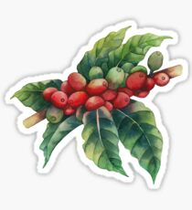Watercolor coffee beans Sticker