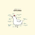 Anatomy of a Chicken by Sophie Corrigan