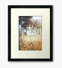 It's Summer! Framed Print