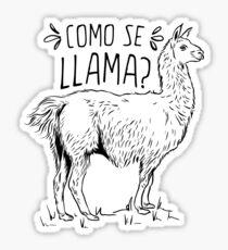 Pegatina Humor Divertido de Como Se Llama Spanish