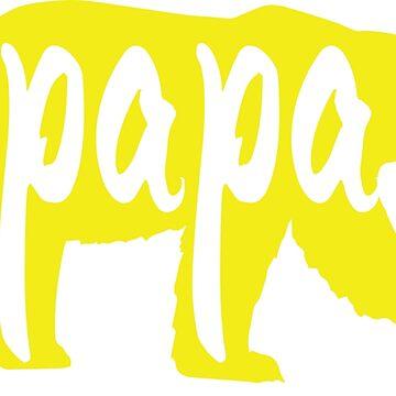 Papa Bear Y by felicicilife