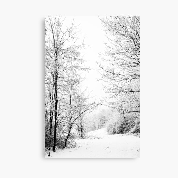 Winter wonderland black and white photography Canvas Print