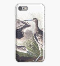Willet - John James Audubon iPhone Case/Skin