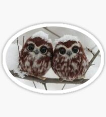 Two happy little owls Sticker