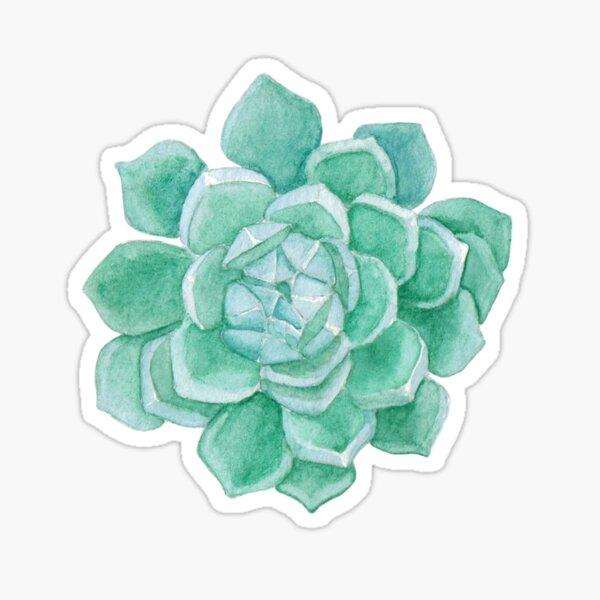 Cacti lover Sticker