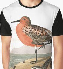 Red Knot - John James Audubon Graphic T-Shirt