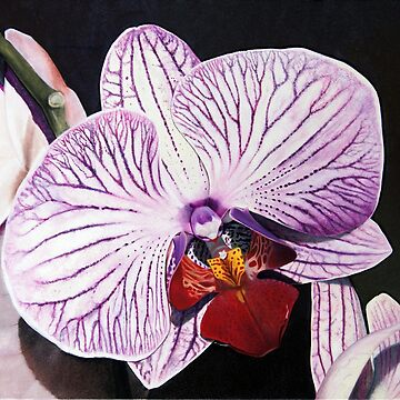 Purple Orchid by matteopaints