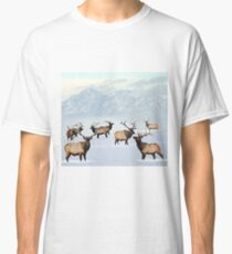 Northern bull elk Classic T-Shirt