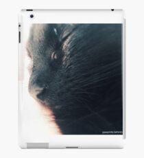 Peaceful Kitten iPad Case/Skin