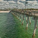 A Day at the Pier on Brohard Beach  by John  Kapusta