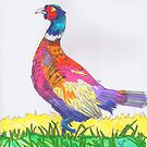 Pheasant drawing by MikeJory