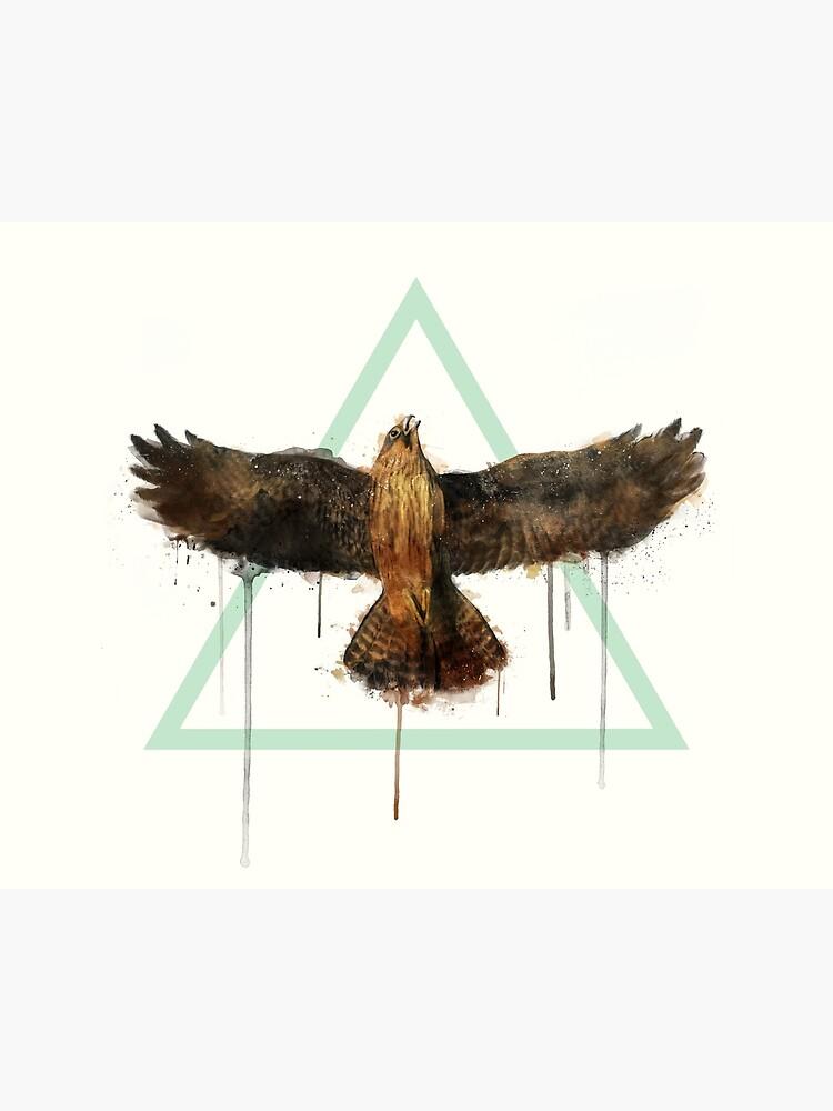 Falcon by AmyHamilton