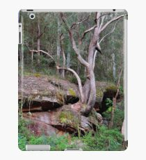 Trees in the Valley iPad Case/Skin