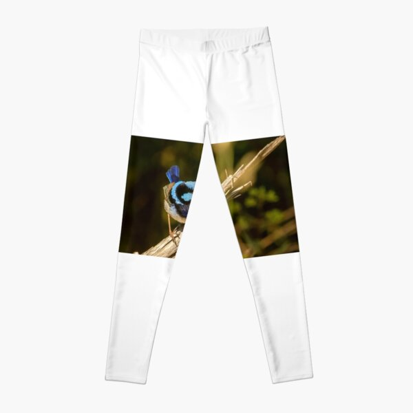 Male Fairy Wren Leggings