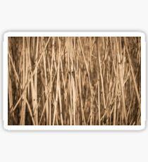 Dry cattail straw Sticker