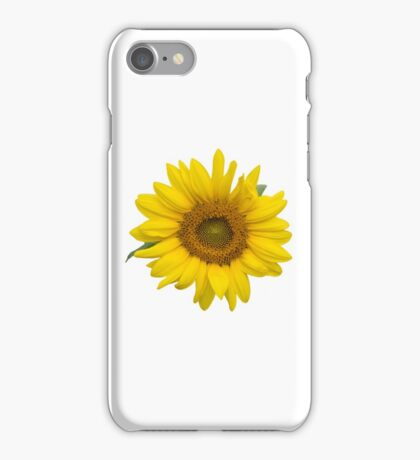Sunflower Thoughts on a Winter Day iPhone Case/Skin