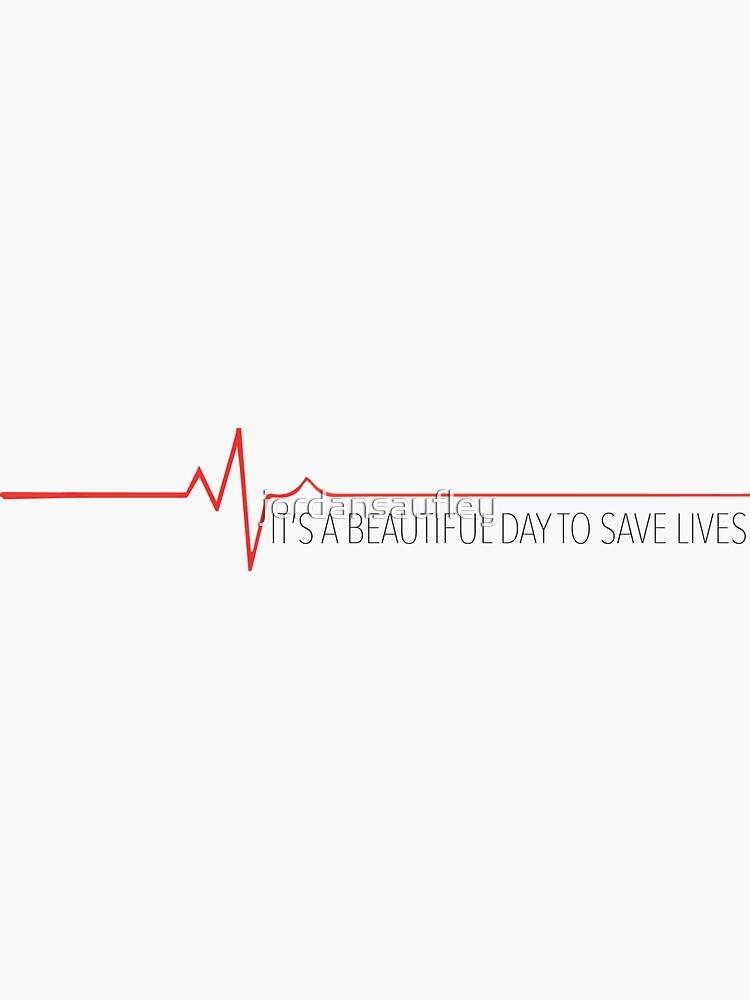 Un hermoso día para salvar vidas de jordansaufley