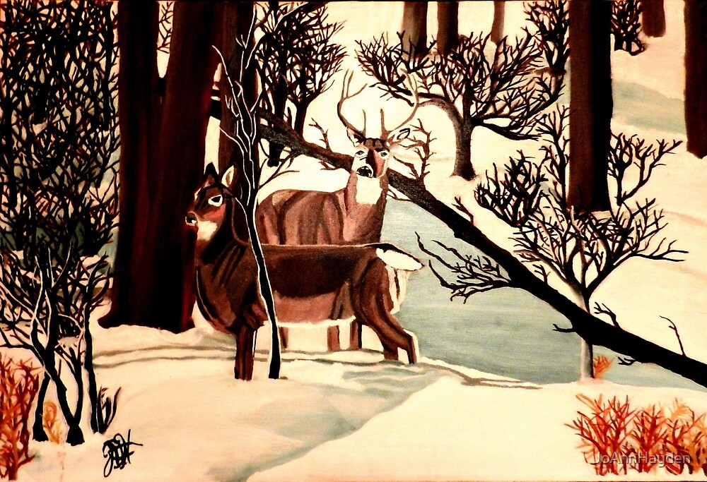 """DEER """"WHO IS THERE?"""" by JoAnnHayden"""