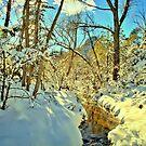 Winter Stream In Prescott Arizona by K D Graves Photography