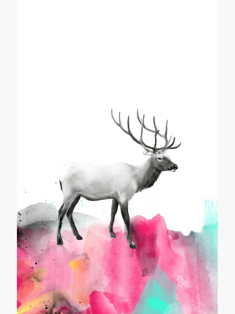 Wild No.2 // Elk by AmyHamilton