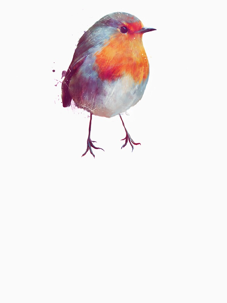 Winter Robin by AmyHamilton