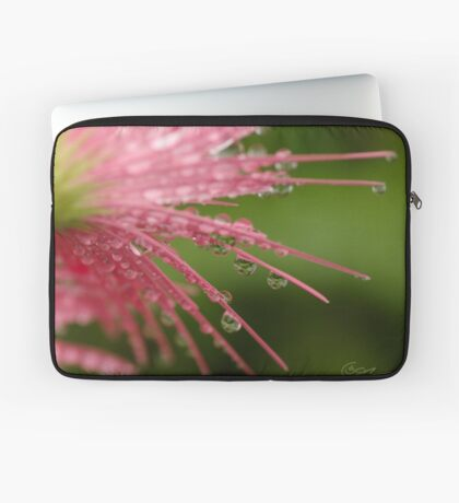 Reflections in Raindrops Laptop Sleeve