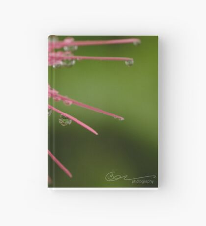 Reflections in Raindrops Hardcover Journal