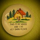 This is my house and I do as I darn please. by Barberelli