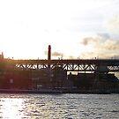 Sydney Sunset by DeeCl
