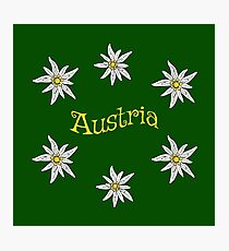 Edelweiss Austria Photographic Print
