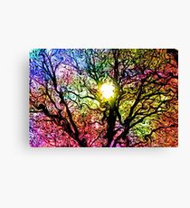 Psychedelic Dreams Canvas Print