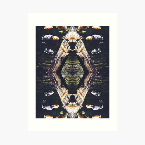 Fish reflection Art Print