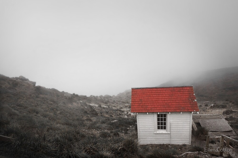 One Room in a Fog by Ellen Cotton