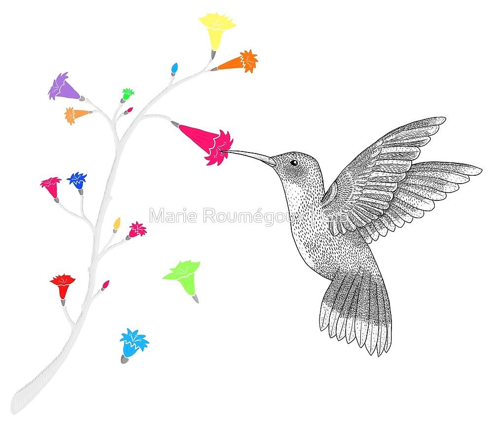 Colorful hummingbird by Marie Roumégoux   Gib