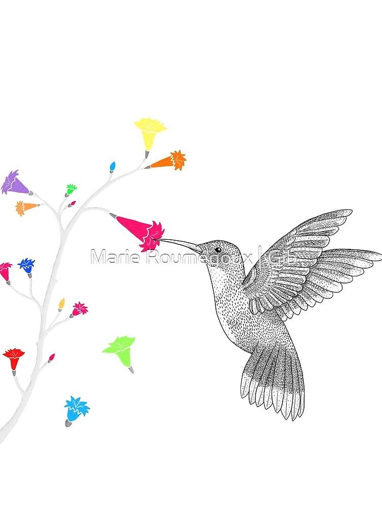 Colorful hummingbird by mariegib